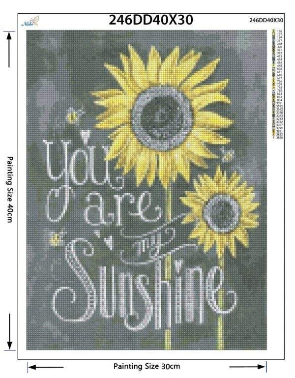 You are my sunshine chalkboard saying diamond painting kit