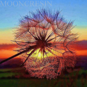 Dandelion at sunset diamond painting kit