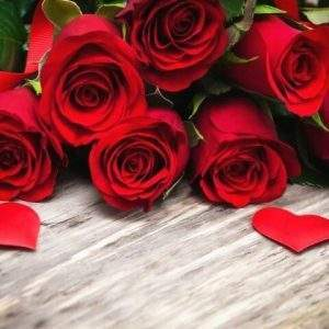 Red Roses Diamond Art Kit