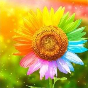 Colourful flower square diamond painting kit